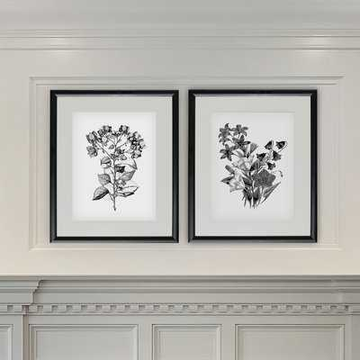 'Botanical Black and White' 2 Piece Framed Acrylic Painting Print Set - Wayfair