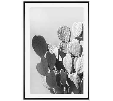 """Monochrome Desert Cactus Framed Print by Jane Wilder, 28 x 42"""", Wood Gallery Frame, Black, Mat - Pottery Barn"""