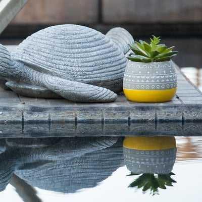 2 Tone Floral Pattern Desktop Succulent Plant in Pot - AllModern