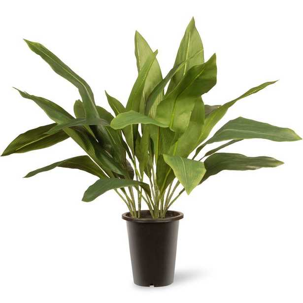 30 in. Garden Accents Aspidistra FAUX Plant - Home Depot