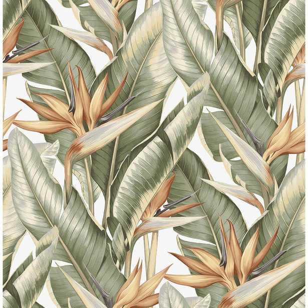 Arcadia Light Green Banana Leaf Wallpaper - Home Depot