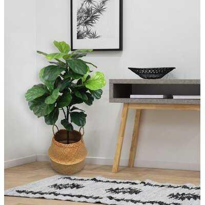 Fiddle Leaf Tree in Seagrass Basket - Wayfair