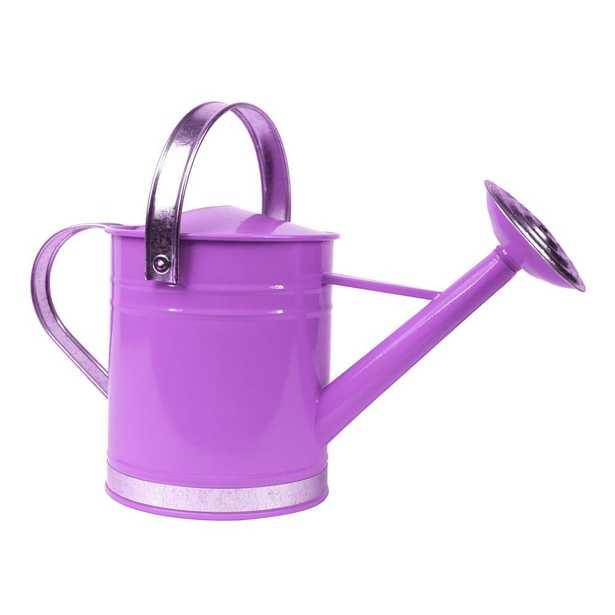 Basic 1 Gal. Purple Metal Watering Can - Home Depot