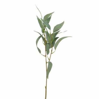 Spiky Eucalyptus Branch - Wayfair