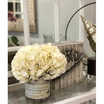 Hydrangea Floral Arrangement in a French Label Pot - Birch Lane