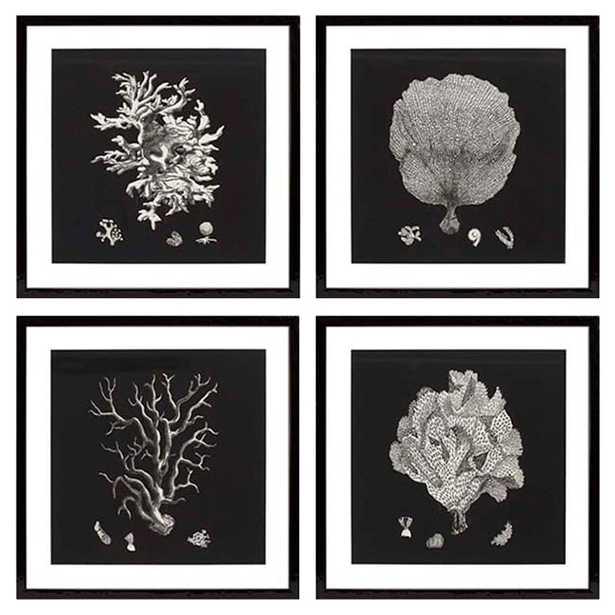 Eichholtz Coastal Beach Set of 4 Black & Tan Corals Framed Wall Art Prints - Kathy Kuo Home