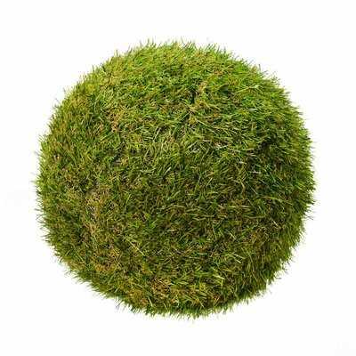 Ball Ornament Foliage Grass - Wayfair