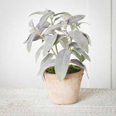 Faux Sage Plant in Pot - Wayfair