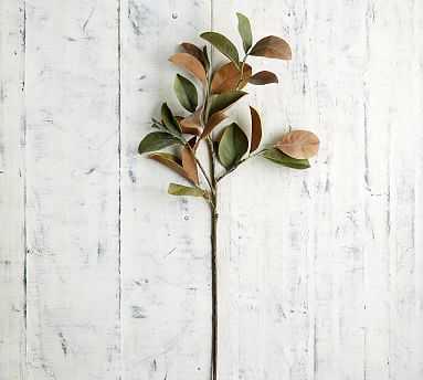 Faux Magnolia Leaf Branch - Pottery Barn