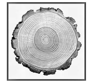 "Tree Lines Framed Print, 33 x 33"" - Pottery Barn"