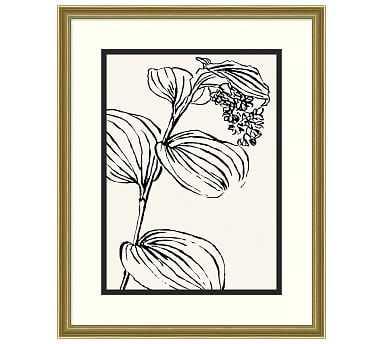 "Leaf Lines 1 Framed Print, 25 x 31"" - Pottery Barn"
