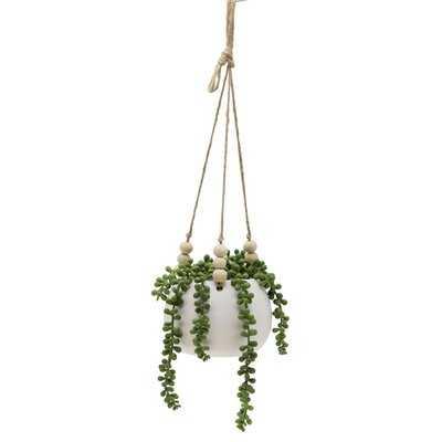 String Ivy Plant in Basket - Wayfair