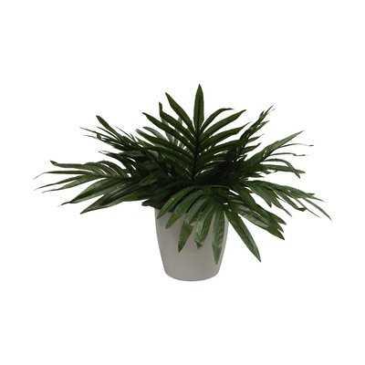 Modern Palm Plant Decorative Vase - AllModern