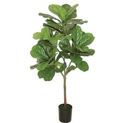 Fiddle Leaf Fig Tree In Plastic Pot - Wayfair