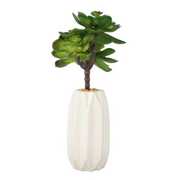 Laura Ashley 12 in. Tall Succulents Artificial Indoor/ Outdoor Faux Dcor in Matte Finished Ceramic Vase - Home Depot
