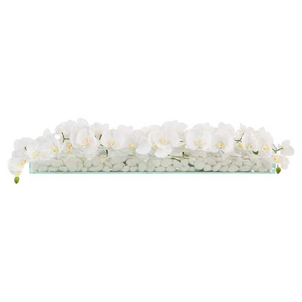 John Richard Modern Classic Floating Orchids - Kathy Kuo Home