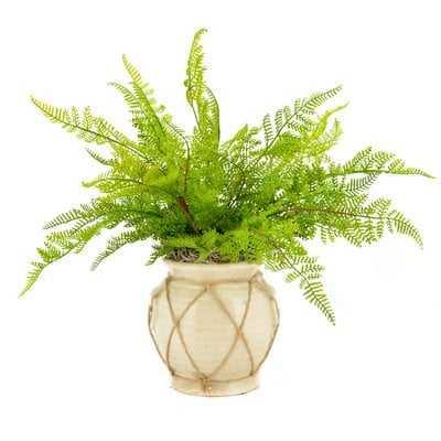Faux Fern in Twine-Wrapped Vase - Wayfair