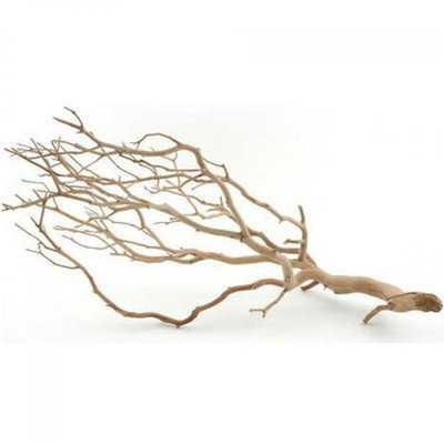 Decorative Natural Manzanita Branch - Birch Lane