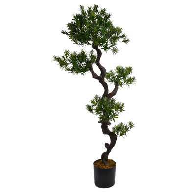 Tall Floor Yucca Tree - Wayfair