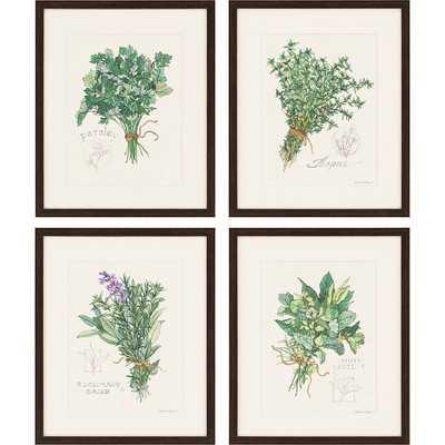 'Herbs' 4 Piece Picture Frame Graphic Art Set - Birch Lane