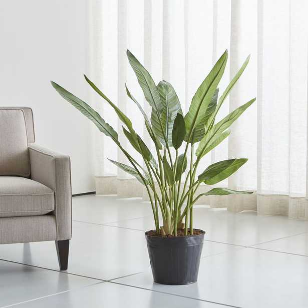 Artificial Bird of Paradise Tree - Crate and Barrel