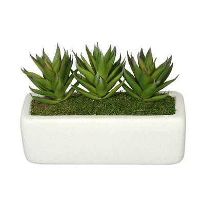 Artificial Green Aloe Plant in Decorative Vase - Wayfair