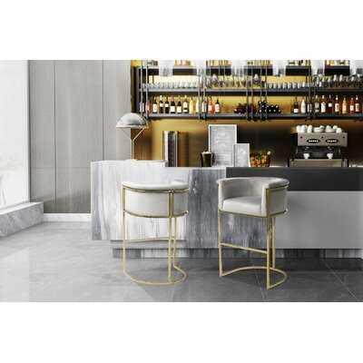Angulo Bar & Counter Stool - Wayfair