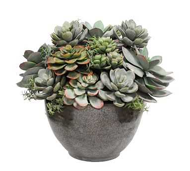"""Faux Mixed Succulent In Bowl, Green, Small, 13"""" - Pottery Barn"""