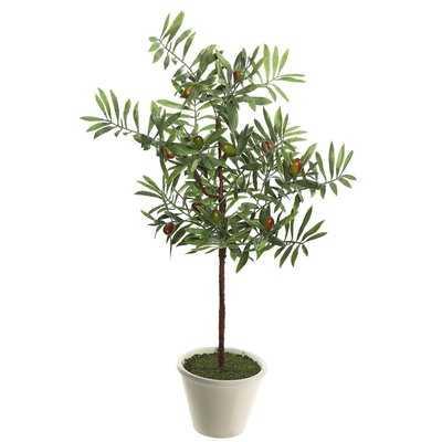 Artificial Green Olive Floor Ficus Tree in Pot - Birch Lane