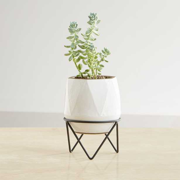 Aaro Small Geo Planter with Stand - Crate and Barrel