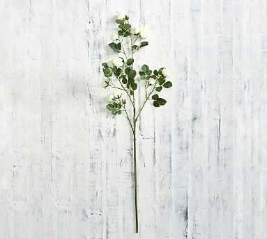 Faux Rose Branch, White, One - Pottery Barn