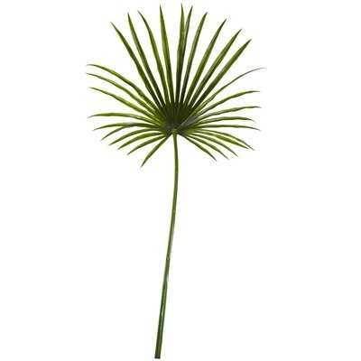Fan Spray Floor Palm Plant - Wayfair