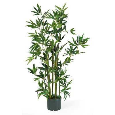 Silk Bamboo Floor Plant in Pot - Wayfair