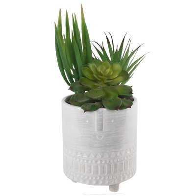 Ceramic Desktop Succulent Plant - Wayfair