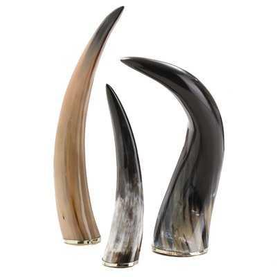Decorative Horn Object - Wayfair