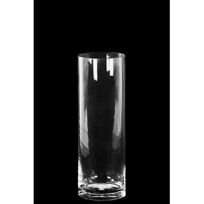 Glass Cylinder Vase - Wayfair