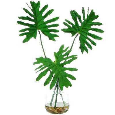 Tropical Leaves Desktop Foliage Plant in Clear Glass Vase - Wayfair