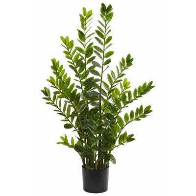 Artificial Zamioculcas Foliage Plant in Planter - Wayfair