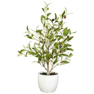 Olive Silk Desk Top Plant in Pot (set of 2) - Wayfair