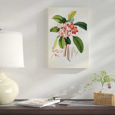 'Plumeria Botanical Print' Graphic Art Print on Canvas - Wayfair