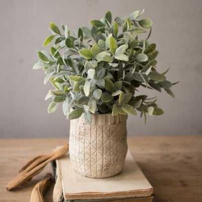 Faux Sage Plant in Hatched Pot - Wayfair