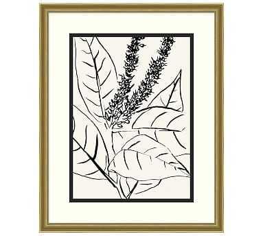 "Leaf Lines 2 Framed Print, 25 x 31"" - Pottery Barn"