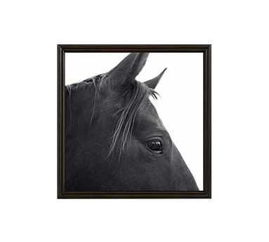 "Dark Horse in Profile Framed Print by Jennifer Meyers, 25 x 25"", Ridged Distressed Frame, Black, No Mat - Pottery Barn"
