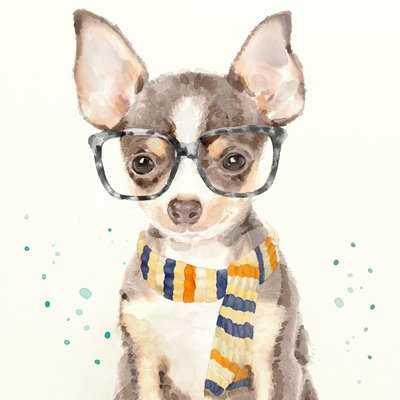 'Funky Glasses Dog II' Print on Canvas - Wayfair