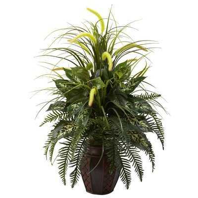 Floor Plant in Planter - Wayfair