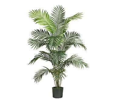 Faux Paradise Palm, 6' - Pottery Barn