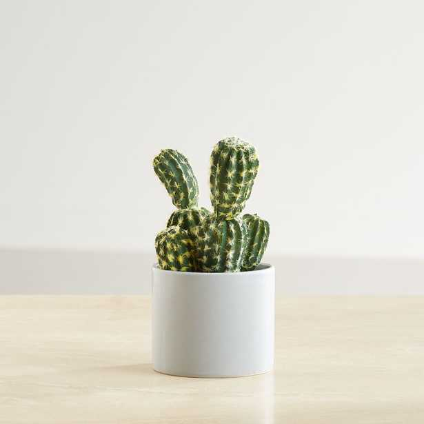 """8"""" Faux Potted Cactus - Crate and Barrel"""