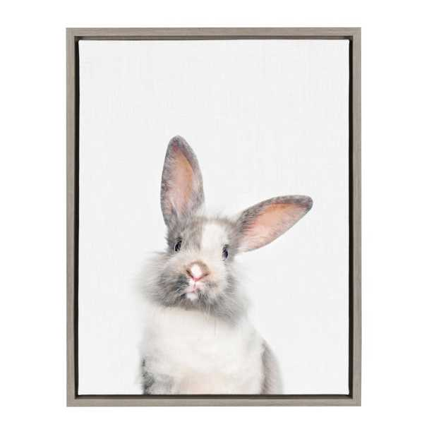 """Sylvie """"Animal Studio Cute Male Rabbit"""" by Amy Peterson Framed Canvas Wall Art, Gray - Home Depot"""