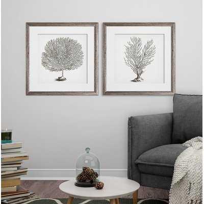 'Coral III' 2 Piece Framed Graphic Art Print Set - Wayfair