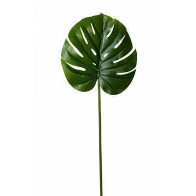 Monstera Leaf (Set of 12) - Wayfair